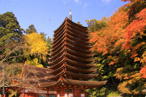 談山神社(奈良)の紅葉 Billede på lærred