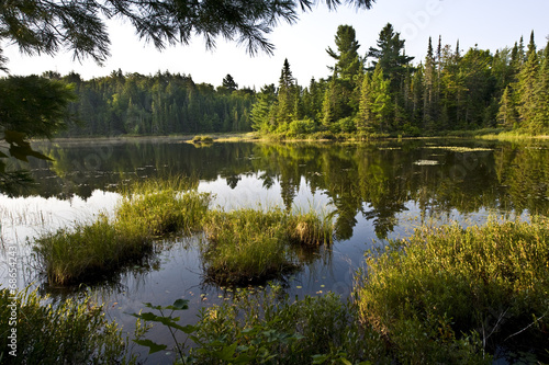 Peck Lake Algonquin Park Wallpaper Mural