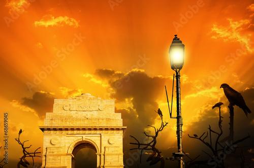 Printed kitchen splashbacks Delhi kite birds at india gate sunset sunrise