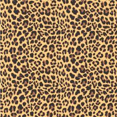 Fototapeta Leopard seamless pattern design, vector illustration background