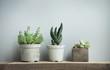 canvas print picture - succulents in diy concrete pots in scandinavian home decor