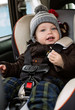toddler boy in the car seat