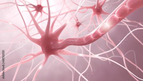 Nervenzellen, Myelinscheide, Neuronen - 3D Illustration Wallpaper Mural