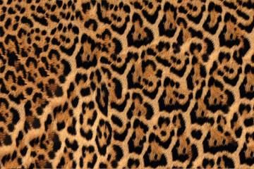Fototapeta Jaguar, leopard and ocelot skin texture