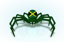 Jamaican Flag Spider