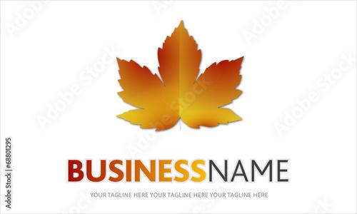 Fotografia, Obraz  logo foglia