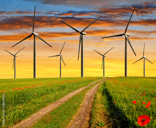dirt-road-in-the-wheat-fields-with-wind-turbines-in-the-sunset