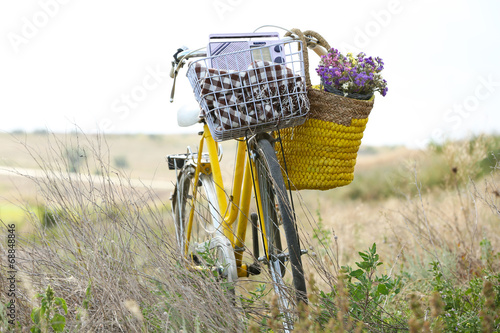 Aluminium Prints Bicycle Bicycle with basket of flowers in meadow during sunset