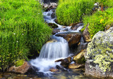 Rzeka wśród trawy i kamieni. Piękny naturalny krajobraz - 68886230