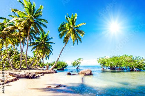 Foto op Plexiglas Caraïben Traumurlaub an einsamem Karibischen Strand :)