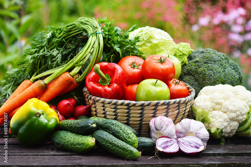 Tuinposter Groenten Variety of fresh organic vegetables in the garden
