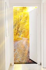 Fototapeta Tür zum Herbst - Door to autumn