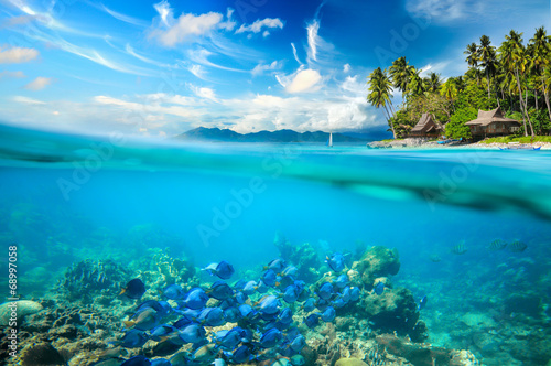 Tuinposter Onder water Coral reef, colorful fish