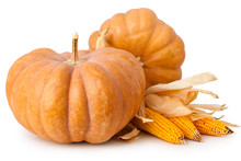 Fresh Pumpkin And Corns Isolated On White Background.