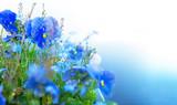 blue summer flowers - 69104843