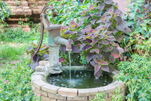Old Water Well With Water Pump Among Colorful Plants