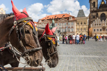 Horse Carriage Waiting For Tourists At The Old Square In Prague.
