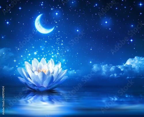 lilia wodna i księżyc w gwiaździstą noc - magiczne tło