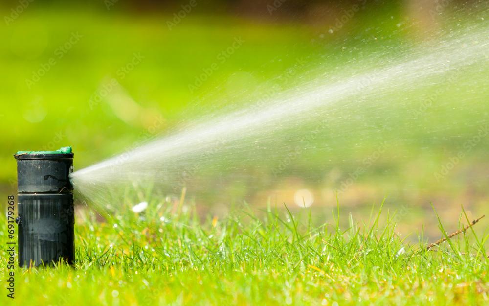 Fototapety, obrazy: Gardening. Lawn sprinkler spraying water over grass.