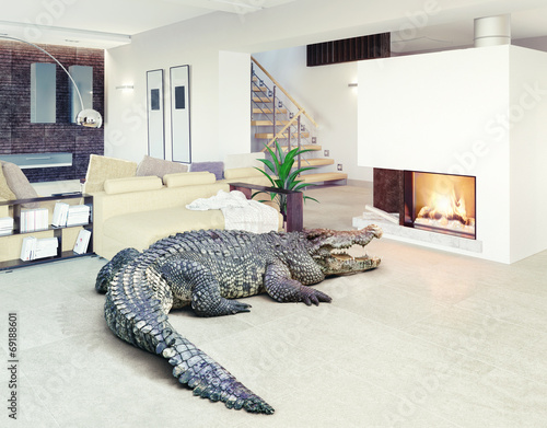 Fotografía crocodile  in the luxury interior