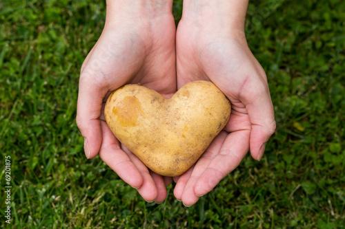 Foto Kartoffelherz I