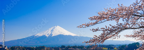 Ingelijste posters Kersenbloesem Fujisan , Mount Fuji view from Kawaguchiko lake, Japan with cher