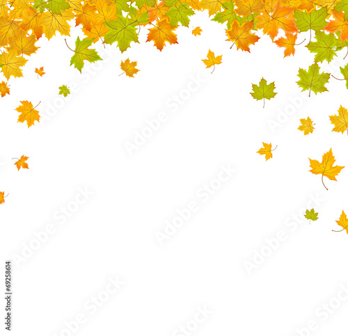 Herbst Hintergrund Blatter Buy This Stock Vector And Explore