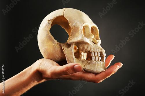 Human skull in hand on dark background Canvas Print