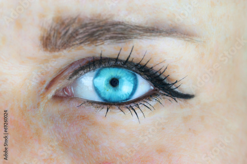 canvas print motiv - nilapictures : Blaues Frauenauge