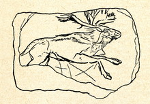 Running Elk (cave Painting)