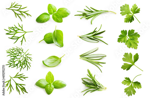 Spice isolated on white background. Fototapet