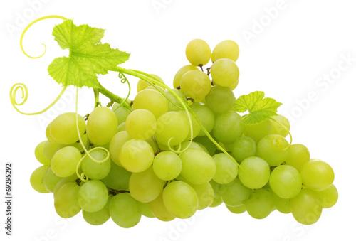 Fotografia, Obraz  Green grape isolated