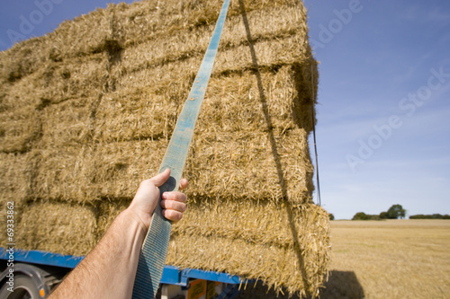 Fotografía  Man fastening strap around straw bales on trailer