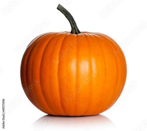Fotografia Pumpkin