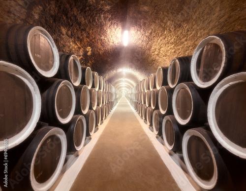 Fototapete - Wine cellar