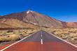Road to volcano Teide at Tenerife island - Canary