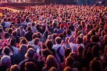 Foule Public Concert Musique