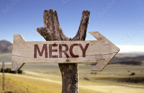 Mercy wooden sign with a desert background Canvas Print