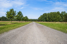Gravel Road Through Fields And Woods
