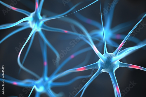 Neurons in the brain Poster