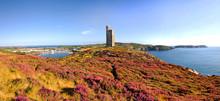 Brada Head, Port Erin, Calf Of Mann - Isle Of Man