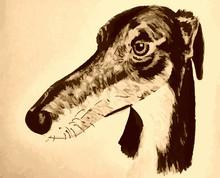 Quirky Hand-drawn Lurcher Original Artwork