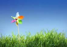 Pinwheel On The Grass