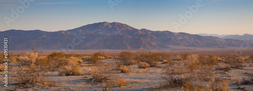 Photo Stands Desert Desert Sunrise