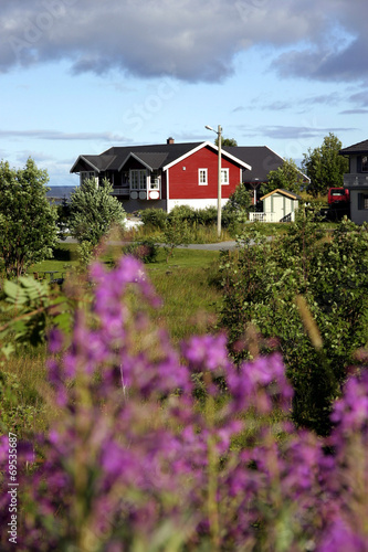 Staande foto Scandinavië norvegia isole lofoten