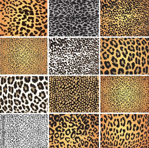 Staande foto Kunstmatig Animal skin fur vector pack leopard zebra