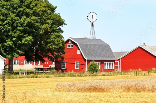 Foto  Farm with Windmill