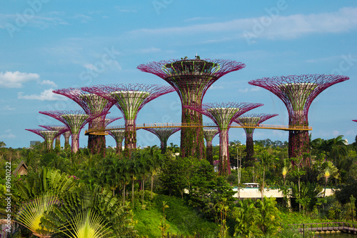 In de dag Singapore Iron Supertrees in Gardens by the Bay in Singapore