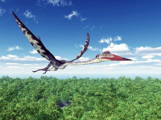 FototapetaPterosaur Quetzalcoatlus
