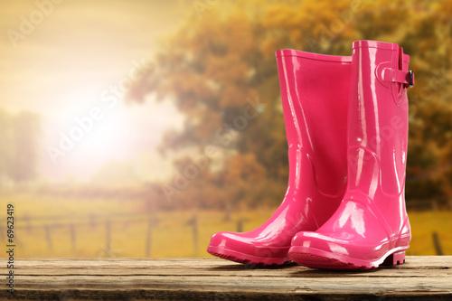 Fotografía  autumn